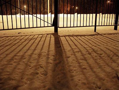 fence-jan05.jpg