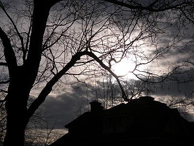 winter-sun.jpg