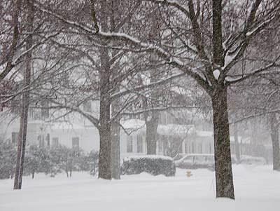 050126_snow.jpg