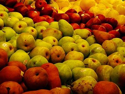 050203_fruit.jpg