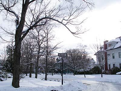 050302_snow.jpg