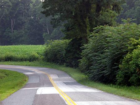 050710_road.jpg